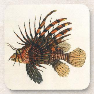 Vintage Lionfish Fish, Marine Ocean Life Animal Beverage Coasters