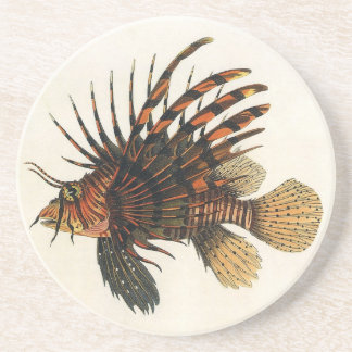 Vintage Lionfish Fish, Marine Ocean Life Animal Drink Coaster