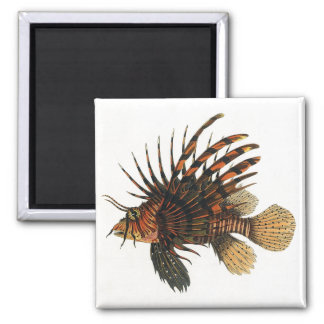 Vintage Lionfish Fish, Marine Ocean Life Animal Magnet