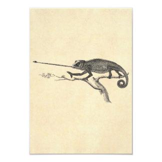 Vintage Lizard Chameleon Illustration Template