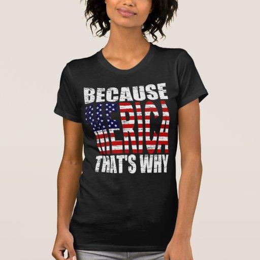 Vintage llevado porque 'MERICA que es porqué Camisetas