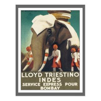Vintage Lloyd Triestino India Postcard