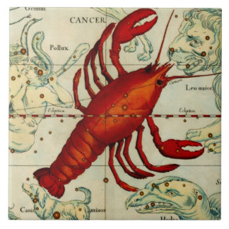 Vintage Lobster Astrollogy Art Ceramic Wall Decor Ceramic Tile