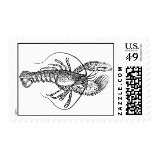 Vintage Lobster Illustration Postage