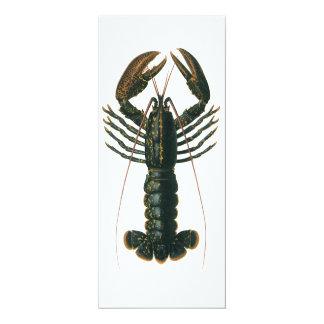 Vintage Lobster, Marine Ocean Life Crustacean Card