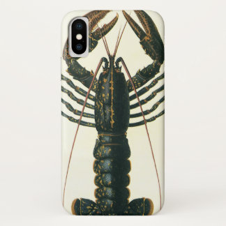 Vintage Lobster, Marine Ocean Life Crustacean iPhone X Case