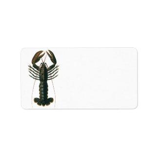 Vintage Lobster, Marine Ocean Life Crustacean Label