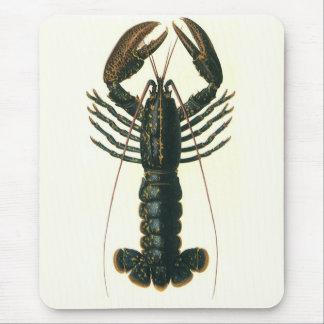 Vintage Lobster, Marine Ocean Life Crustacean Mouse Pad