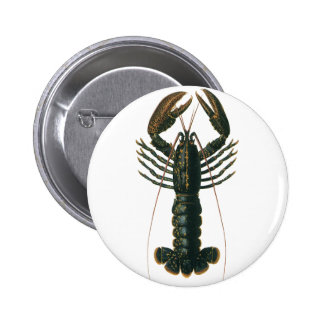 Vintage Lobster, Marine Ocean Life Crustacean Pinback Button