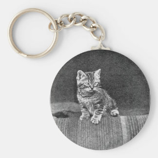 Vintage LOLcat Artwork Key Chain