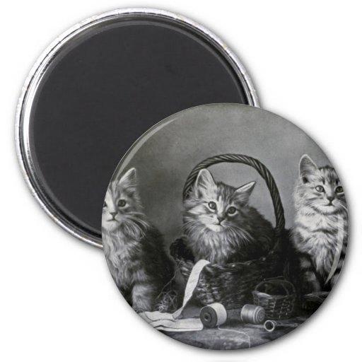 Vintage LOLcats Imán De Frigorífico