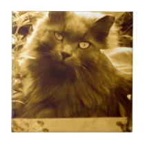 Vintage Long Haired Russian Blue Cat Ceramic Tile