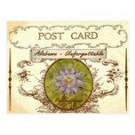 Vintage Look Alabama State Flower Postcard