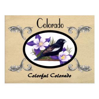 Vintage Look Old Postcard Colorado