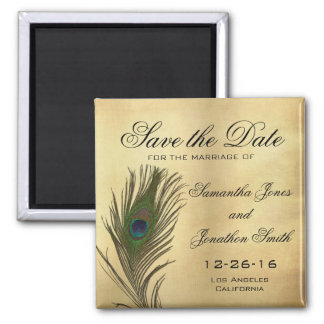 Vintage Look Peacock Feather Elegant Save the Date 2 Inch Square Magnet