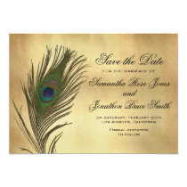 Vintage Look Peacock Feather Elegant Save the Date Card