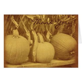 Vintage Look Pumpkins Cornstalks Fall Thank You Card
