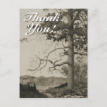 "[ Thumbnail: Vintage Look Scenery + ""Thank You!"" Postcard ]"
