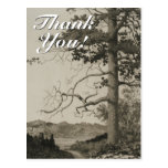 "[ Thumbnail: Vintage Look Scenery + ""Thank You!"" Postcard ]"