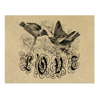 Vintage Love Birds Apparel and Gifts Postcard
