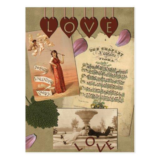 cards  zazzle