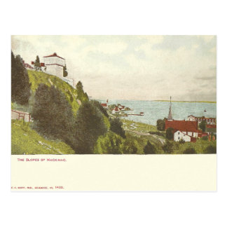 Vintage Mackinac Island Michigan Postcard