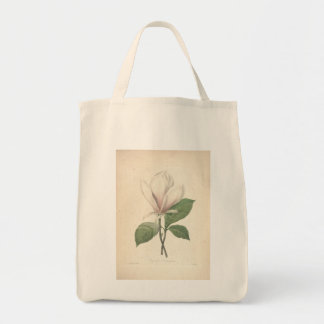 Vintage Magnolia by Redoute - Grocery Bags