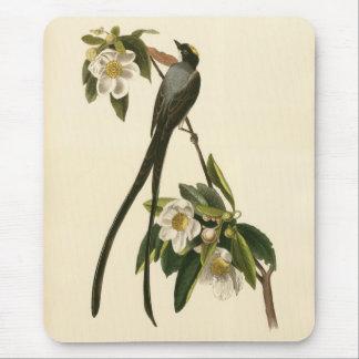 Vintage Magnolia Floral Bird Flycatcher Mouse Pad