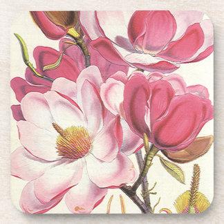 Vintage Magnolia Tree Blossom, Pink Garden Flowers Drink Coaster