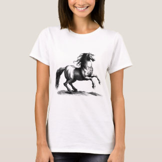 Vintage Majestic Horse Engraving T-Shirt