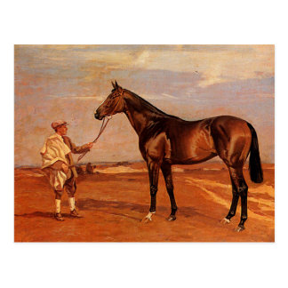 Vintage Man With Brown Race Horse Postcard