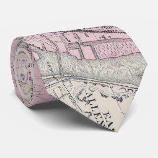 Vintage Map of Allentown Pennsylvania (1872) Neck Tie