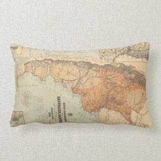 Vintage Map of Argentina (1882) Lumbar Pillow