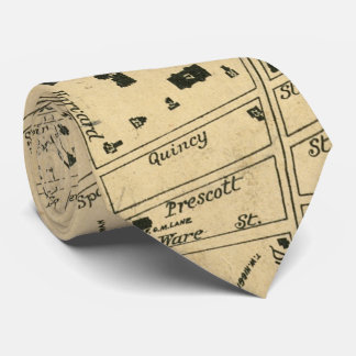 Vintage Map of Cambridge Massachusetts (1880) Tie