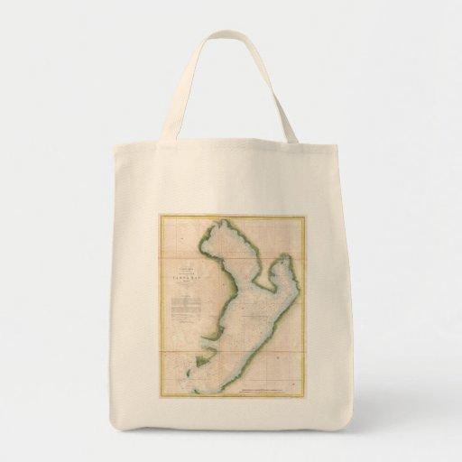 Vintage Map of Coastal Tampa Bay (1855) Grocery Tote Bag