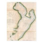 Vintage Map of Coastal Tampa Bay (1855) Post Card