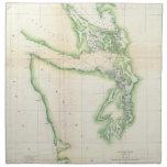 Vintage Map of Coastal Washington State (1857) Cloth Napkin