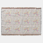 Vintage Map of Downtown Baltimore (1860) Throw Blanket