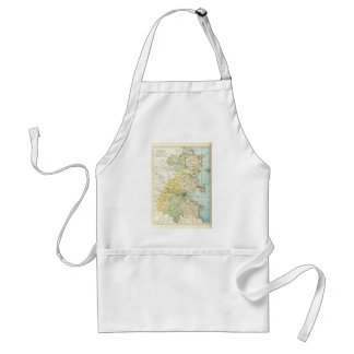 Vintage Map of Dublin and Surrounding Areas (1900) Adult Apron