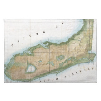 Vintage Map of Florida (1848) Cloth Placemat