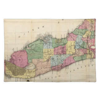 Vintage Map of Florida (1870) Placemat