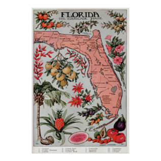 Vintage Map Of Florida (1917) Poster at Zazzle