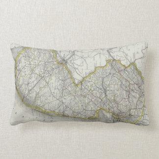 Vintage Map of New Jersey (1889) Lumbar Pillow