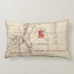 Vintage Map of New Mexico (1882) Pillow