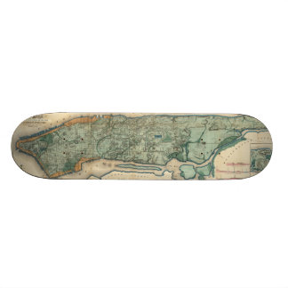 Vintage Map of New York City (1865) Skateboard