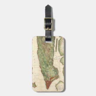 Vintage Map of New York City (1878) Luggage Tag