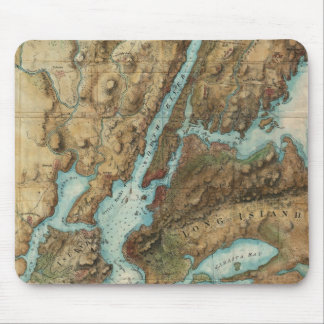Vintage Map of New York City Harbor (1864) Mousepads