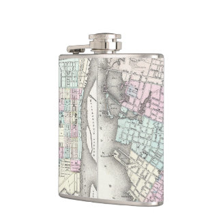 Vintage Map of Savannah and Charleston (1855) Flask