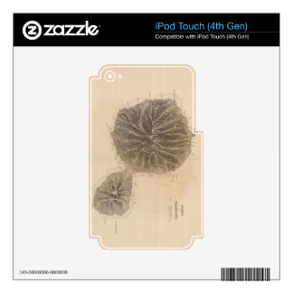 Vintage Map of Tahiti (1845) iPod Touch 4G Skin