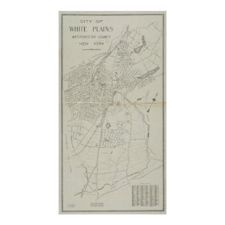 Vintage Map of White Plains NY (1921) Poster